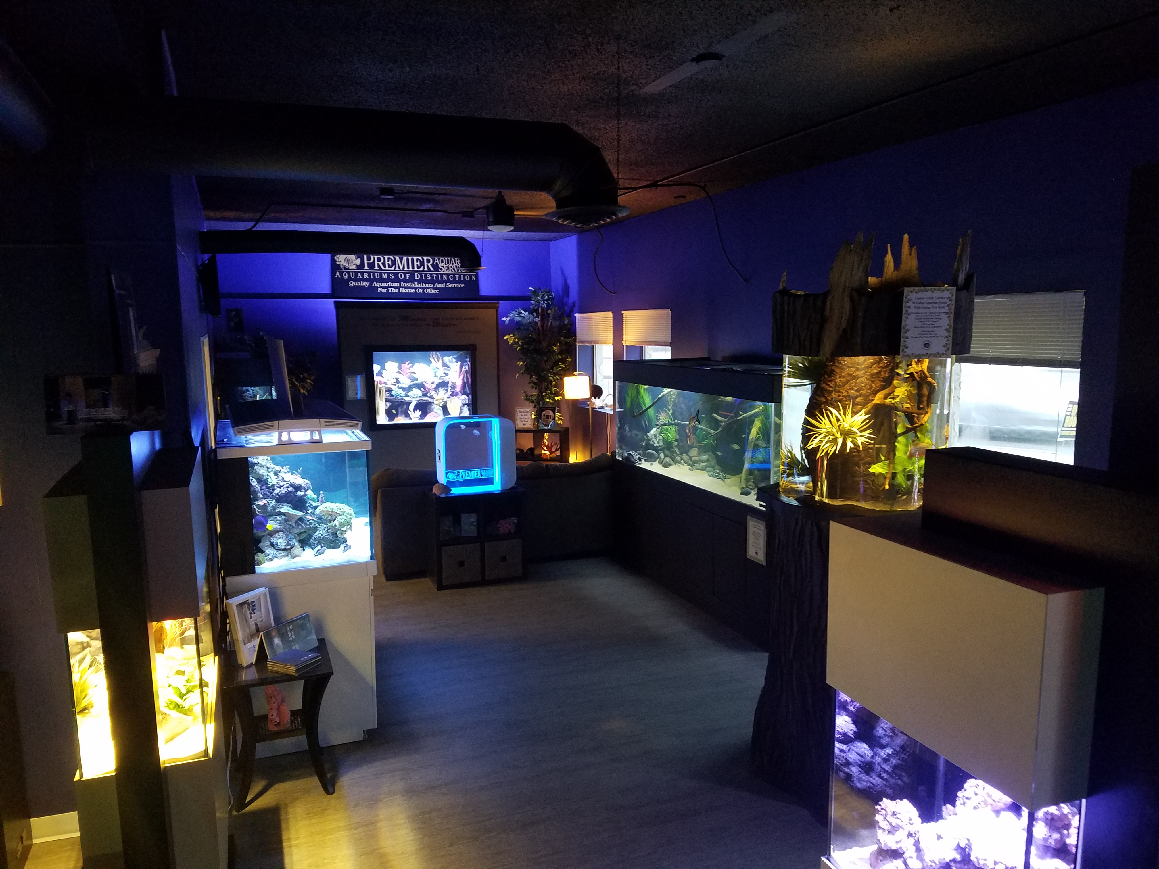 fish tanks Premier Aquarium Service - Minneapolis, Minnesota
