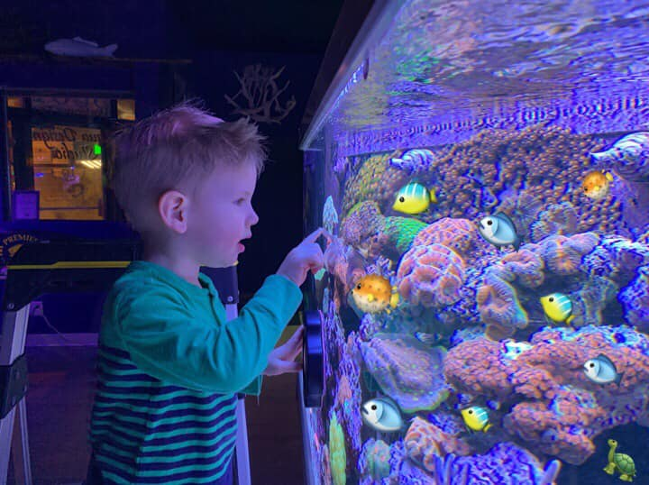 Aquariums Help Children Fall in Love with Nature